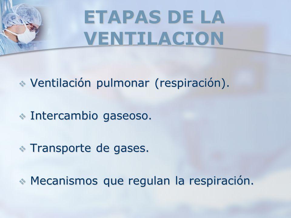 ETAPAS DE LA VENTILACION