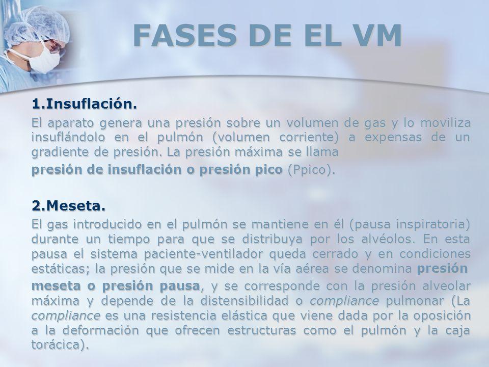FASES DE EL VM 1.Insuflación. 2.Meseta.
