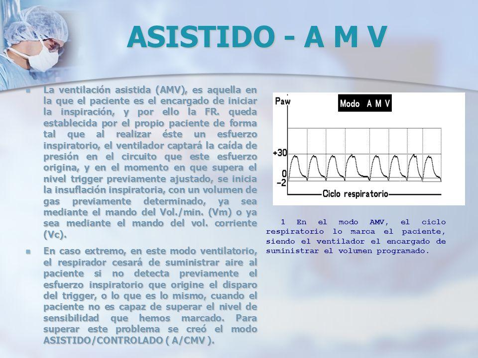 ASISTIDO - A M V