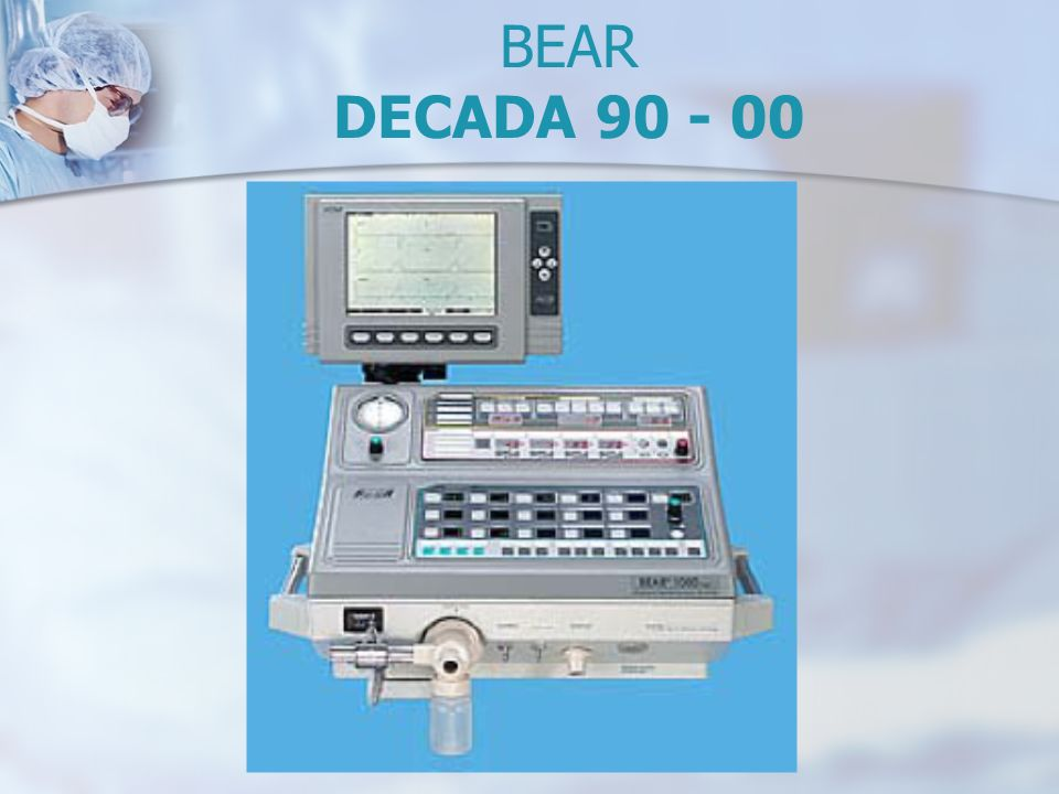 BEAR DECADA 90 - 00