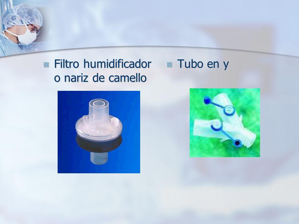 Filtro humidificador o nariz de camello