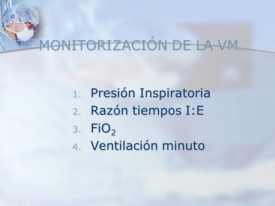 MONITORIZACIÓN DE LA VM