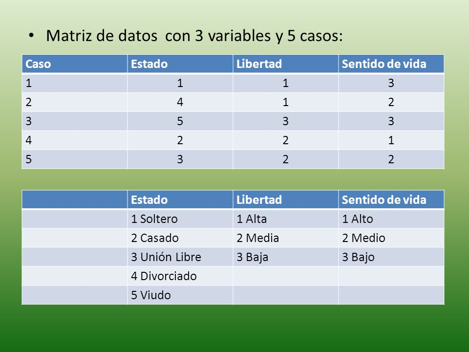 Matriz de datos con 3 variables y 5 casos: