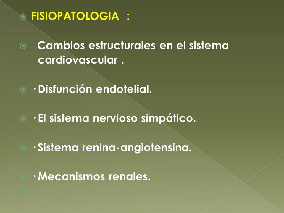 FISIOPATOLOGIA : Cambios estructurales en el sistema. cardiovascular . · Disfunción endotelial. · El sistema nervioso simpático.