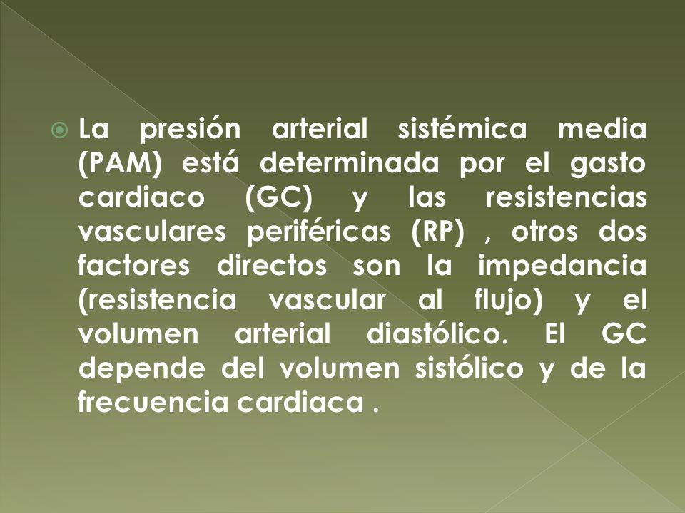 La presión arterial sistémica media (PAM) está determinada por el gasto cardiaco (GC) y las resistencias vasculares periféricas (RP) , otros dos factores directos son la impedancia (resistencia vascular al flujo) y el volumen arterial diastólico.