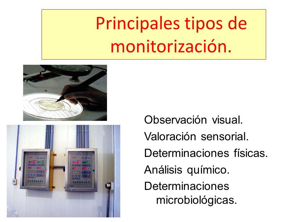 Principales tipos de monitorización.