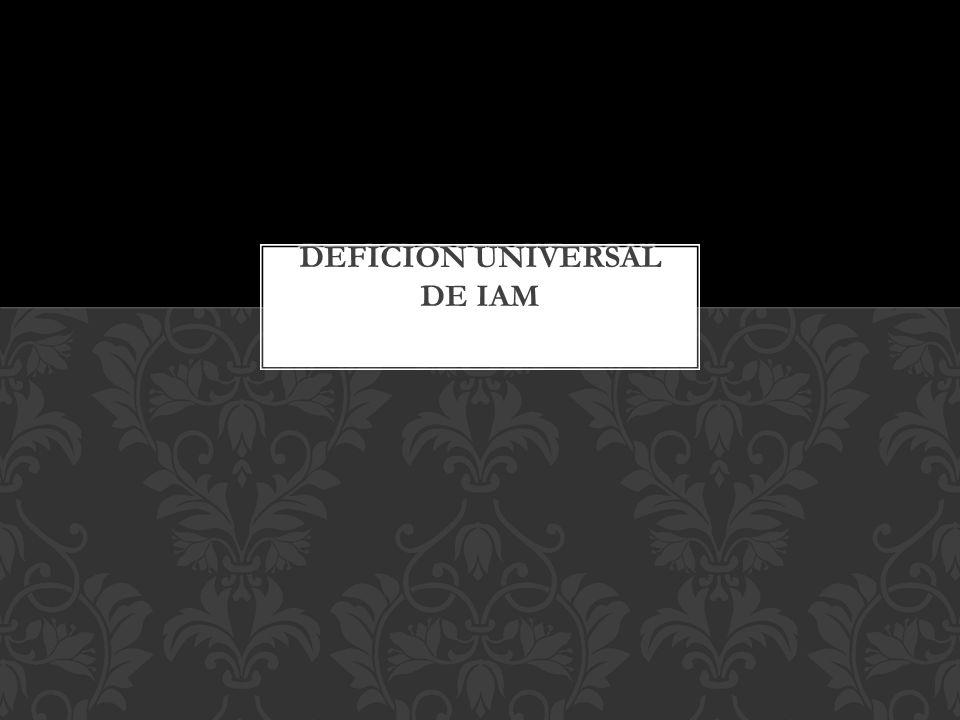 Deficion universal de IAM