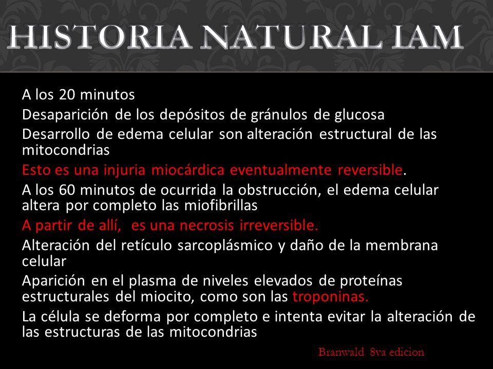 HISTORIA NATURAL IAM