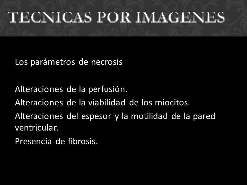 TECNICAS POR IMAGENES