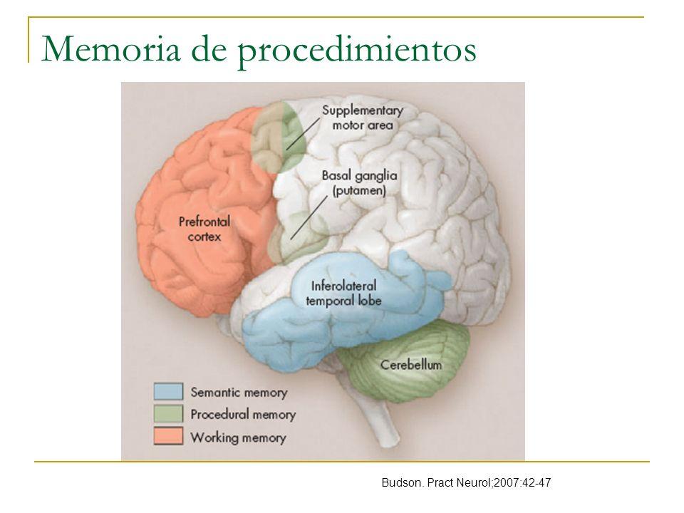 Memoria de procedimientos