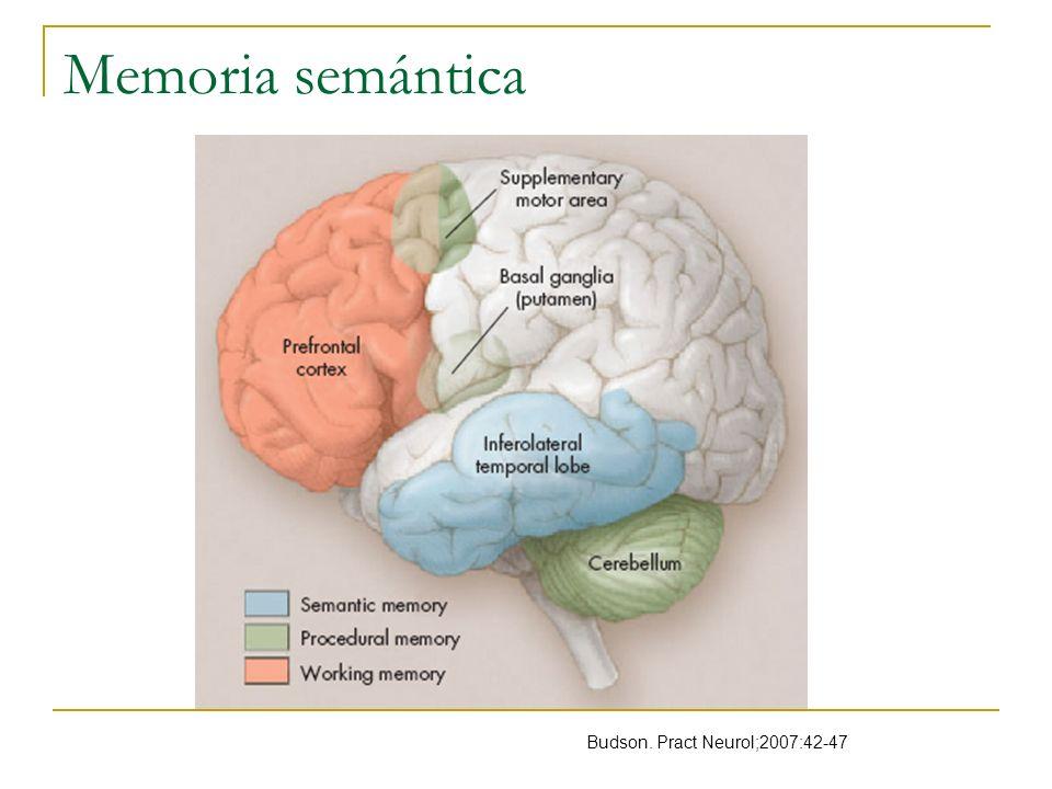 Memoria semántica Budson. Pract Neurol;2007:42-47