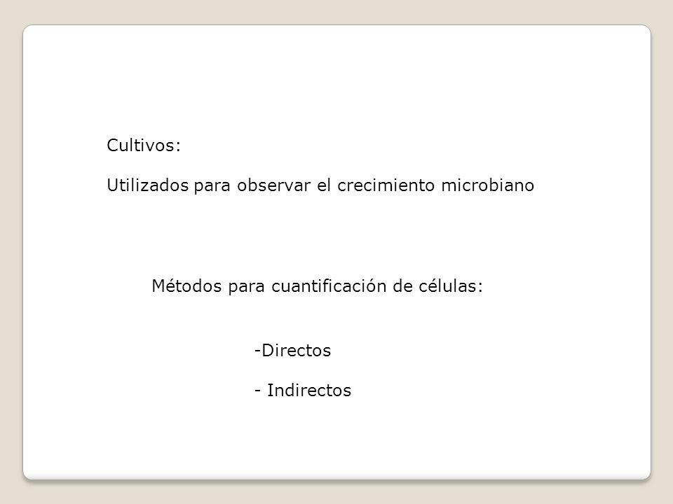 Cultivos: Utilizados para observar el crecimiento microbiano. Métodos para cuantificación de células: