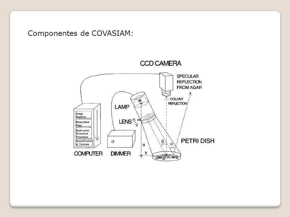Componentes de COVASIAM: