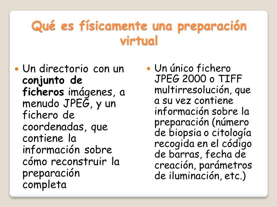 Qué es físicamente una preparación virtual