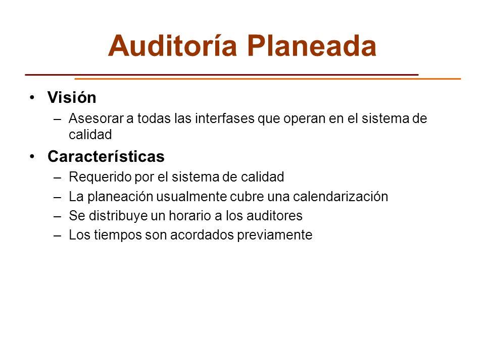 Auditoría Planeada Visión Características