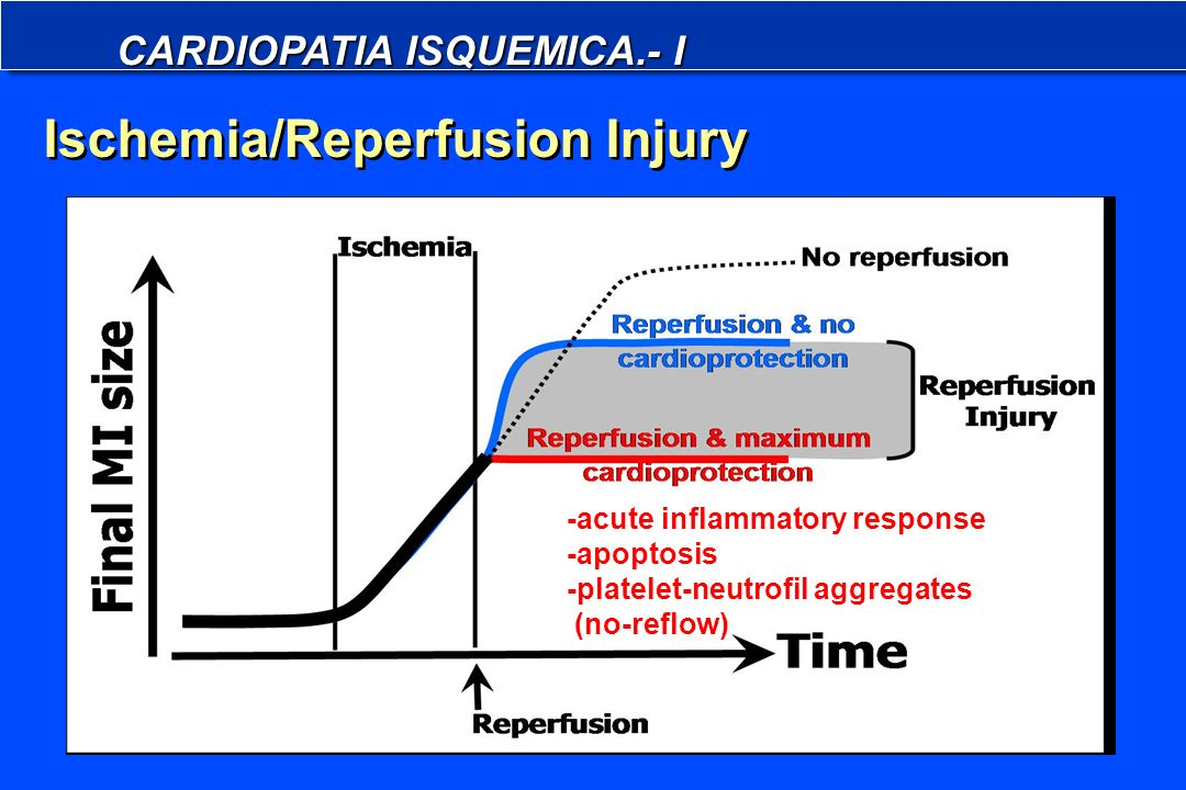 Ischemia/Reperfusion Injury