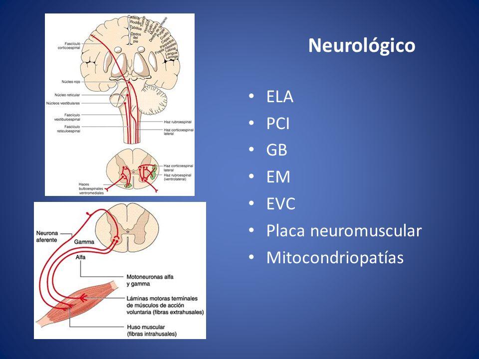 Neurológico ELA PCI GB EM EVC Placa neuromuscular Mitocondriopatías