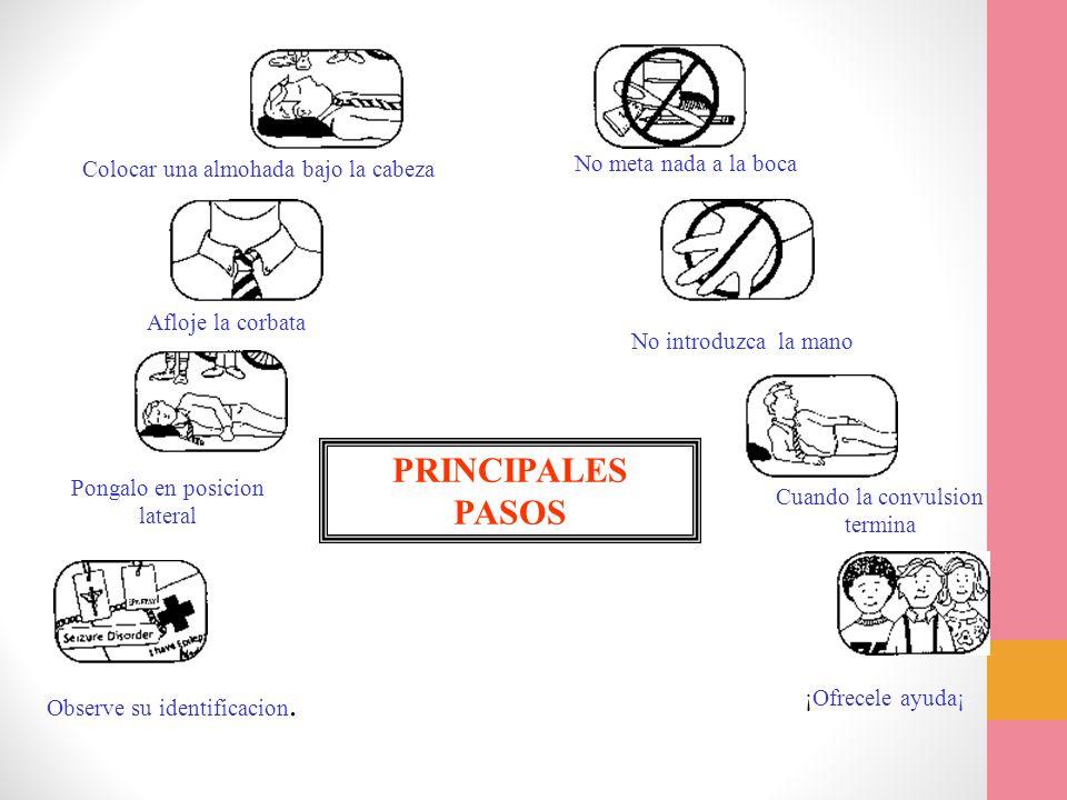 PRINCIPALES PASOS No meta nada a la boca