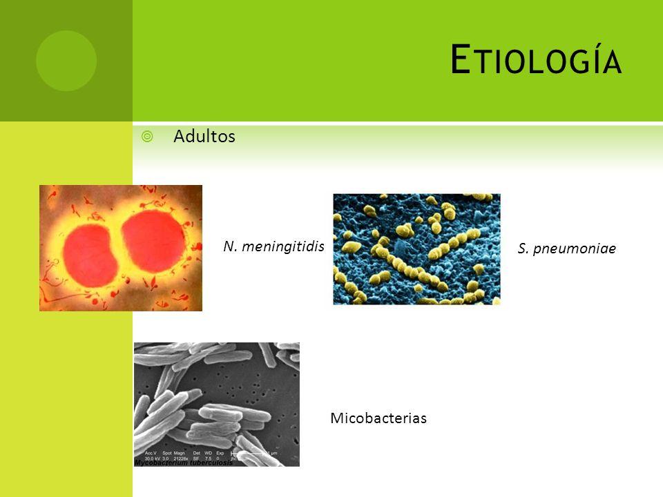 Etiología Adultos N. meningitidis S. pneumoniae Micobacterias