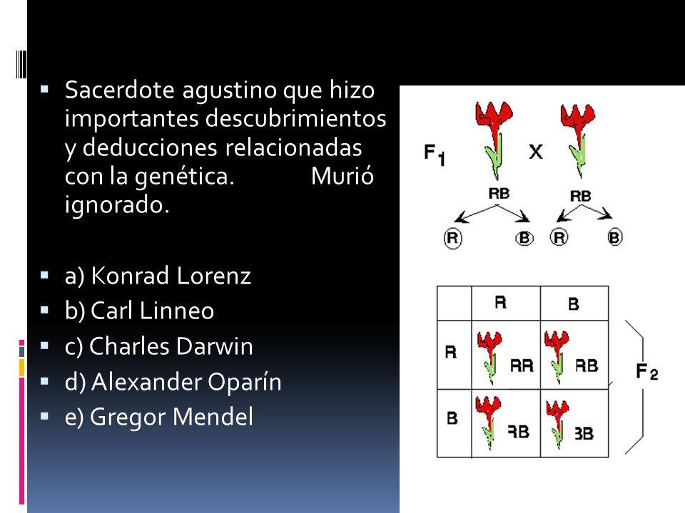 Sacerdote agustino que hizo importantes descubrimientos y deducciones relacionadas con la genética. Murió ignorado.