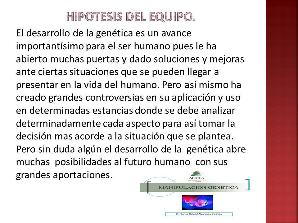 HIPOTESIS DEL EQUIPO.
