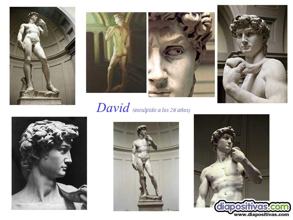 David (esculpido a los 26 años)