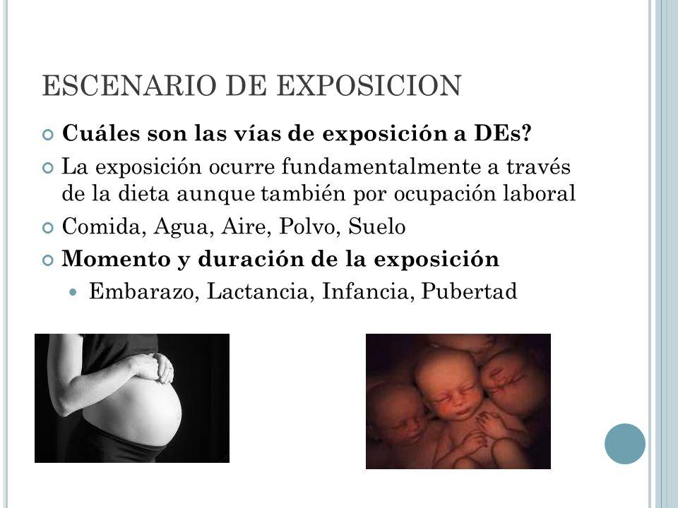 ESCENARIO DE EXPOSICION