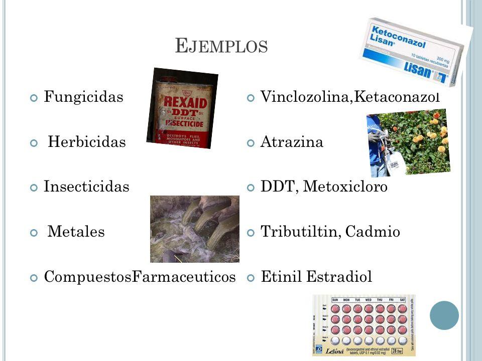 Ejemplos Fungicidas Herbicidas Insecticidas Metales