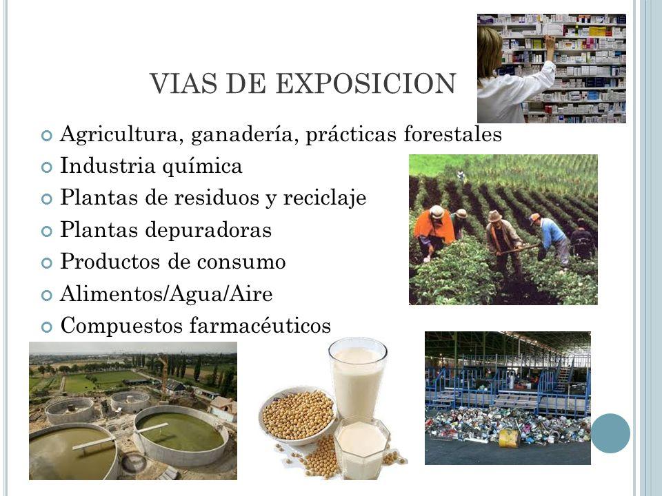 VIAS DE EXPOSICION Agricultura, ganadería, prácticas forestales