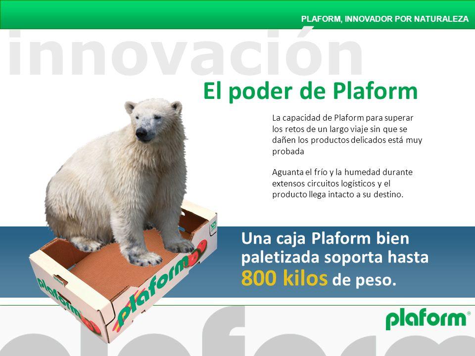 innovación El poder de Plaform