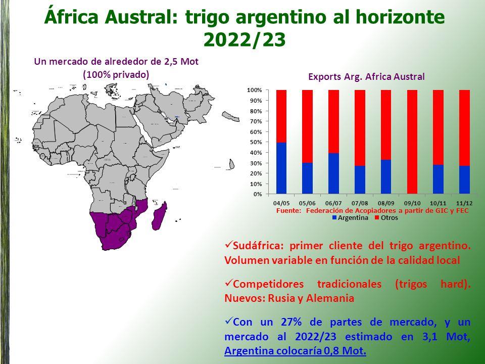 África Austral: trigo argentino al horizonte 2022/23