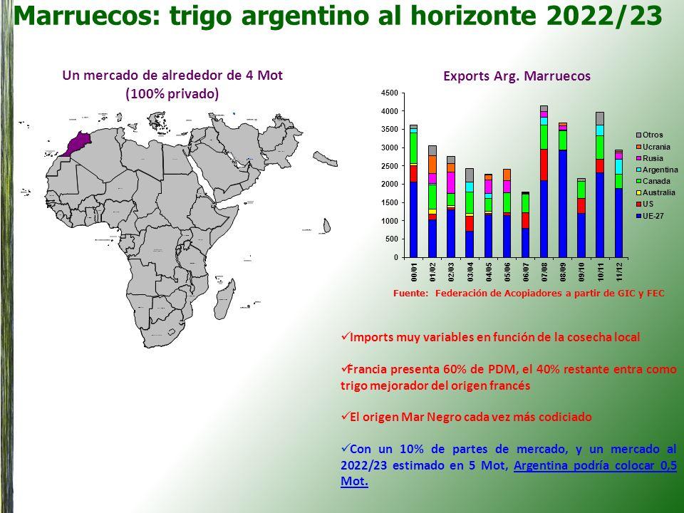Marruecos: trigo argentino al horizonte 2022/23