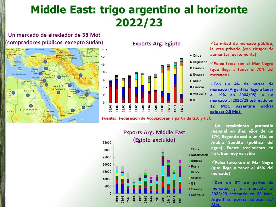 Middle East: trigo argentino al horizonte 2022/23