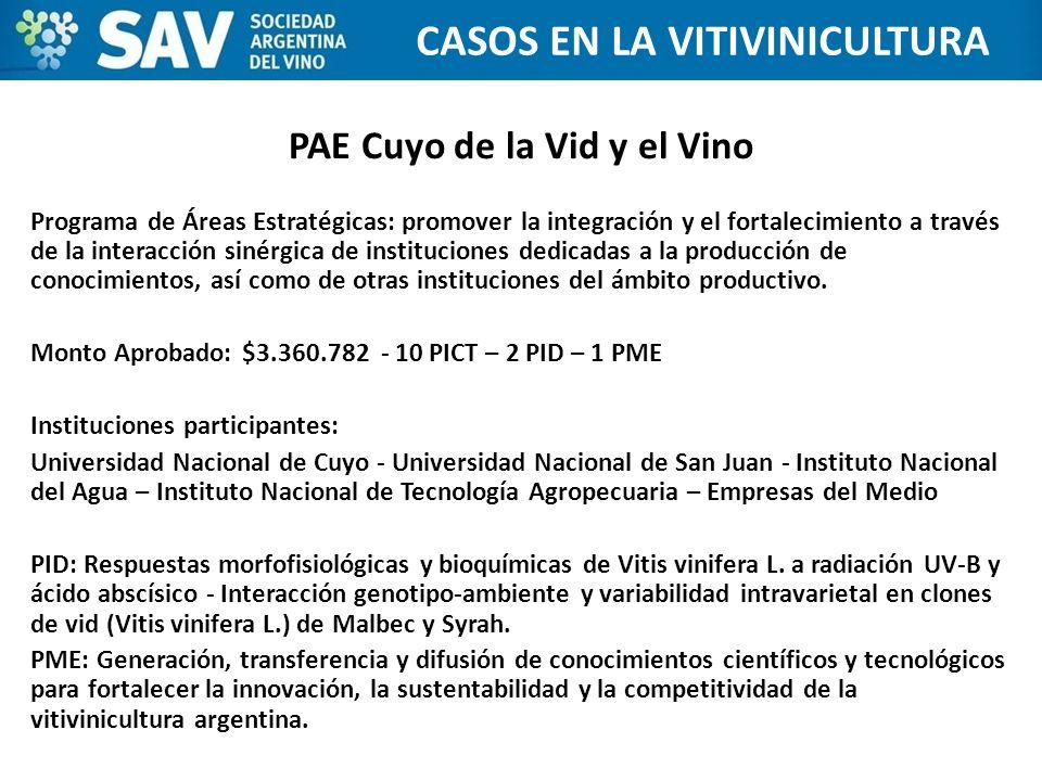 PAE Cuyo de la Vid y el Vino