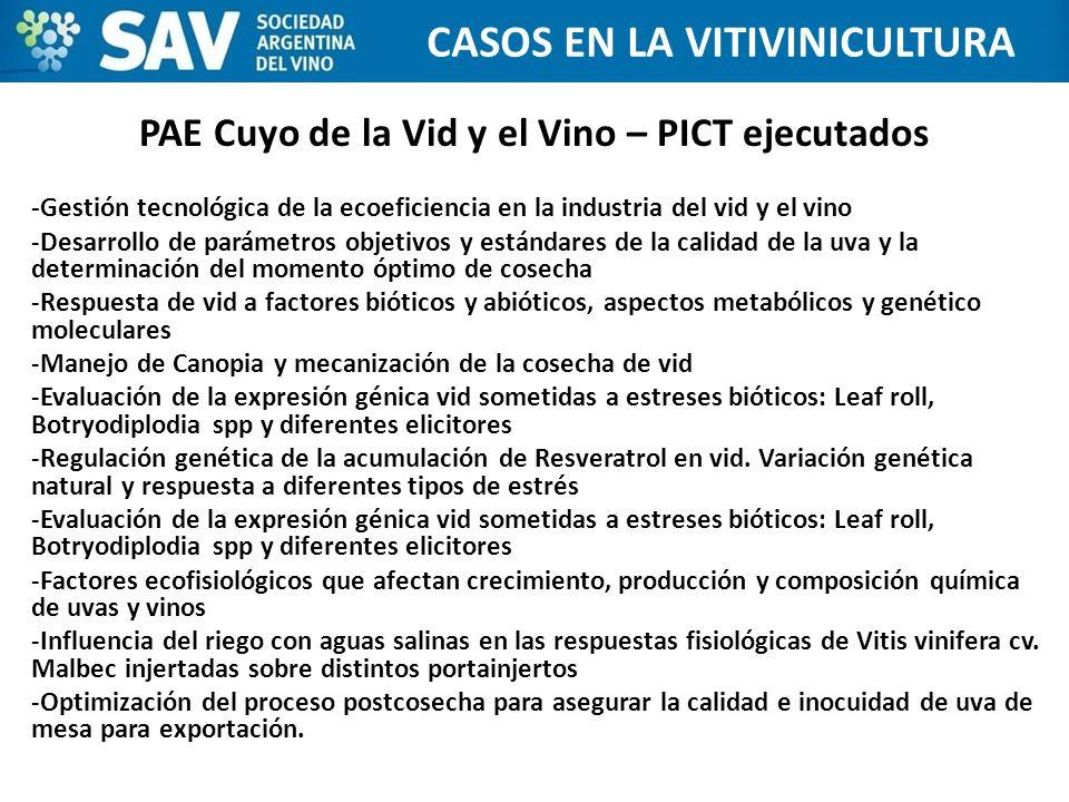 PAE Cuyo de la Vid y el Vino – PICT ejecutados
