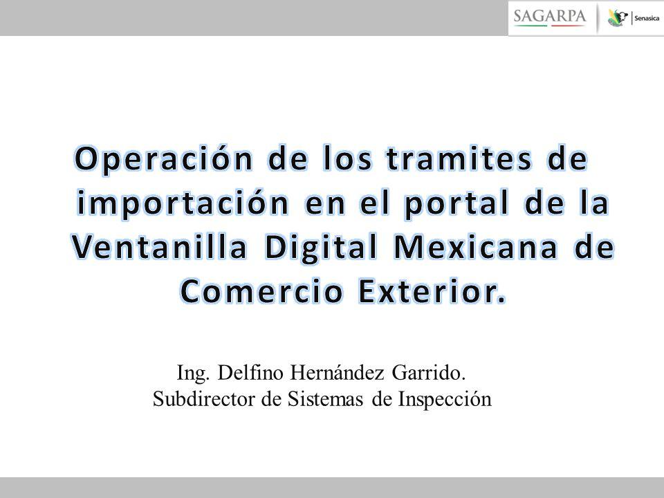 Operación de los tramites de importación en el portal de la Ventanilla Digital Mexicana de Comercio Exterior.