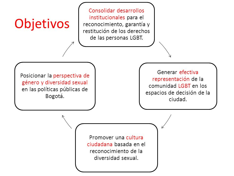 Consolidar desarrollos institucionales para el reconocimiento, garantía y restitución de los derechos de las personas LGBT.