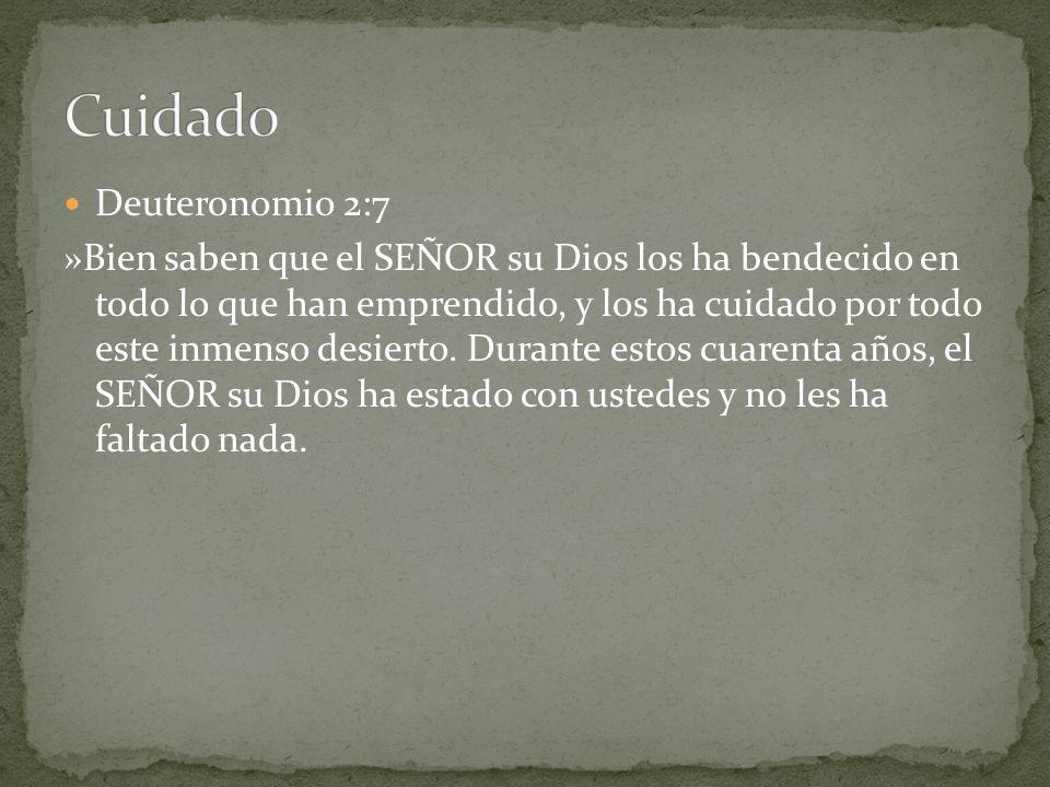 Cuidado Deuteronomio 2:7