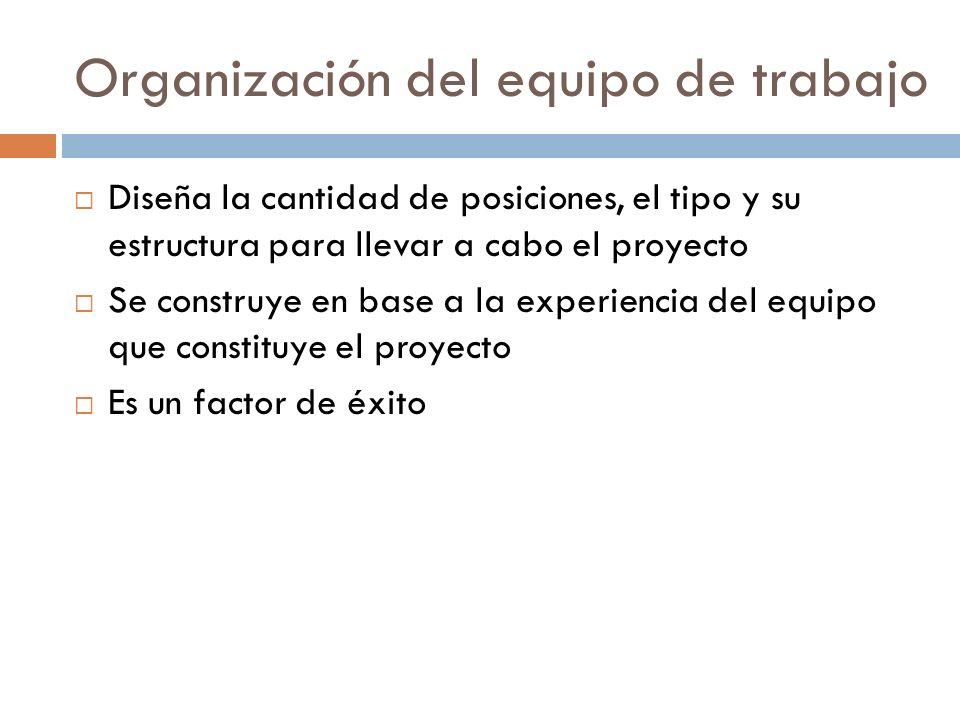 Organización del equipo de trabajo