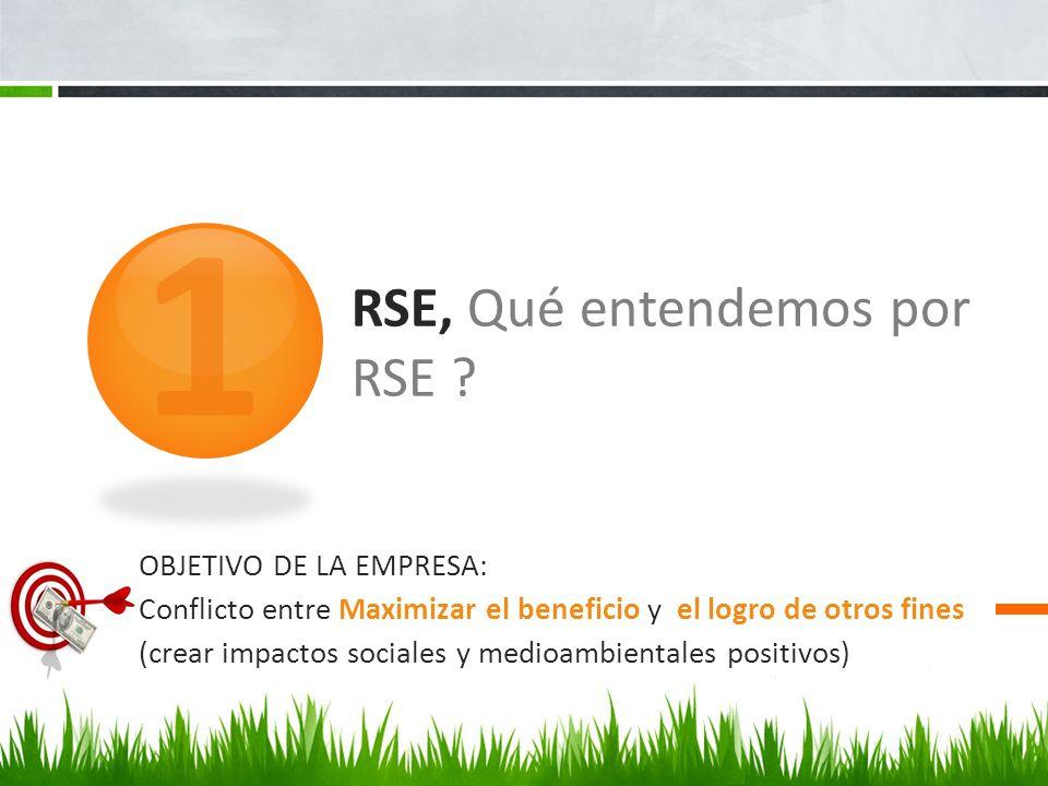 RSE, Qué entendemos por RSE