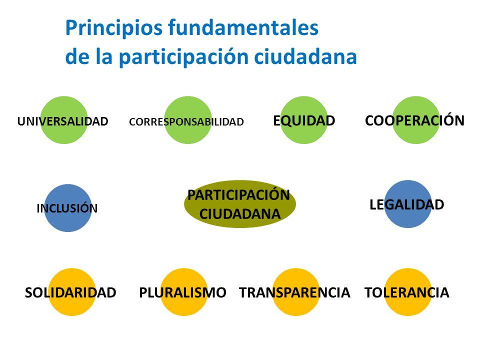 Principios fundamentales de la participación ciudadana