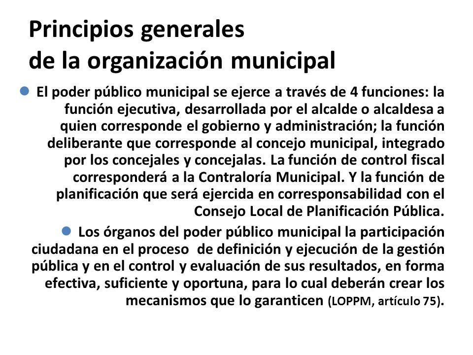 Principios generales de la organización municipal