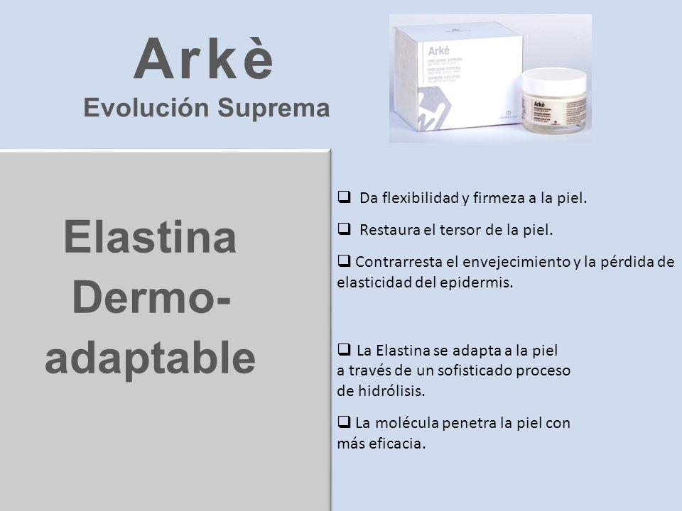 Arkè Elastina Dermo- adaptable Evolución Suprema