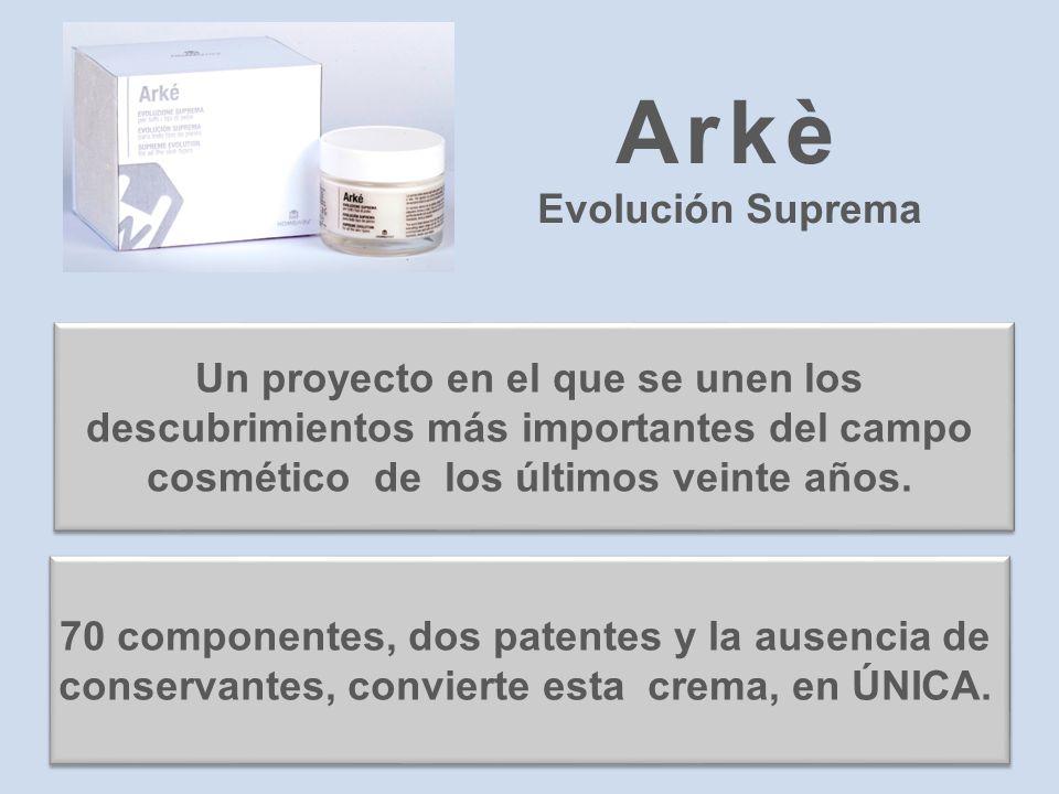Arkè Evolución Suprema Un proyecto en el que se unen los