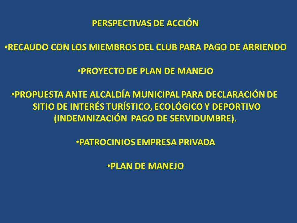 PERSPECTIVAS DE ACCIÓN