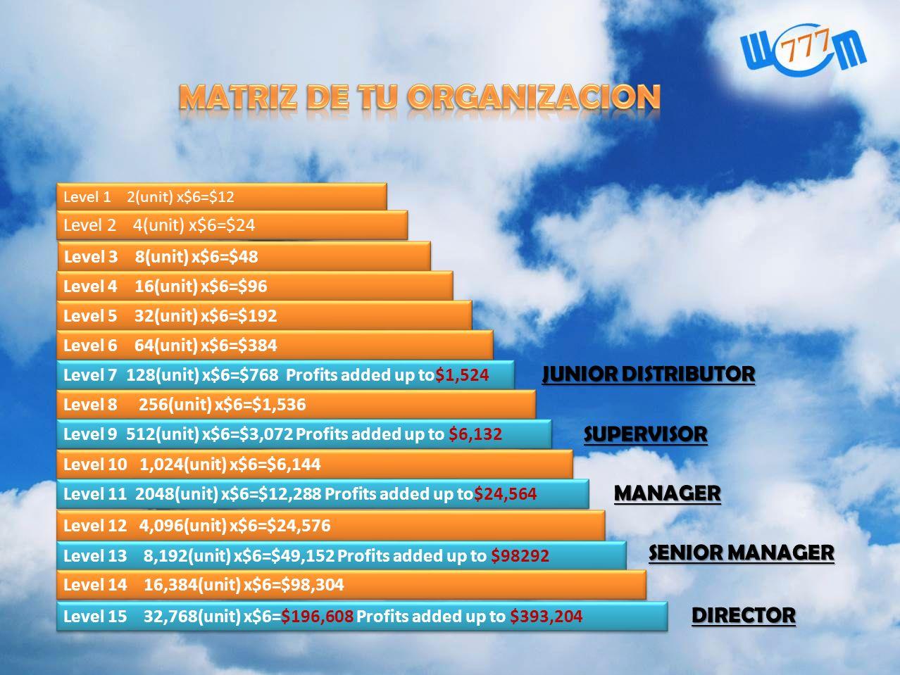MATRIZ DE TU ORGANIZACION