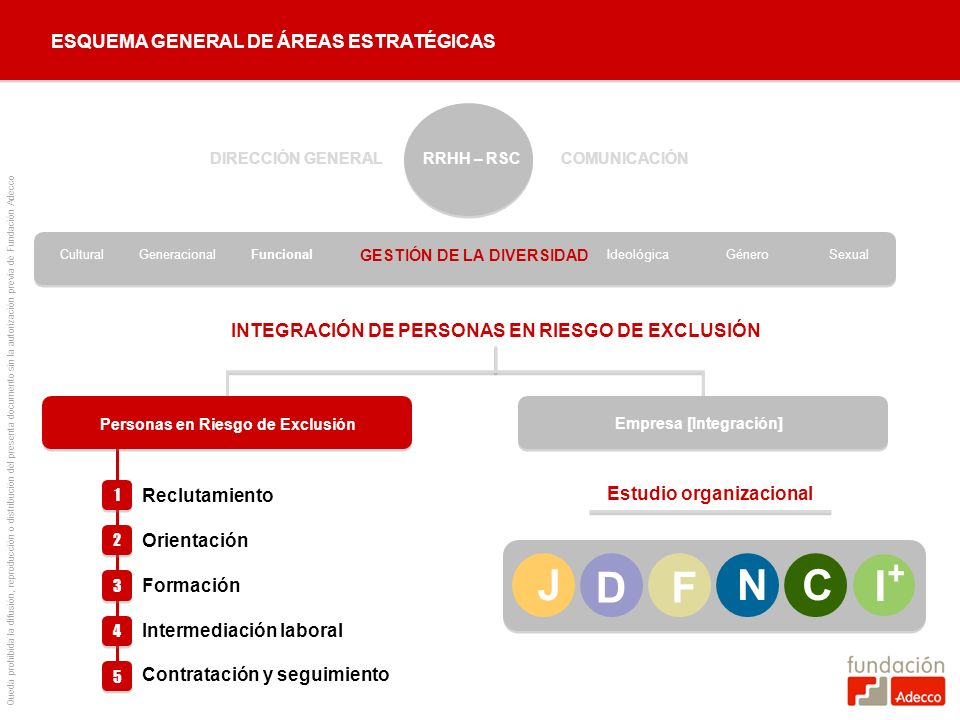 + J D F N C I ESQUEMA GENERAL DE ÁREAS ESTRATÉGICAS