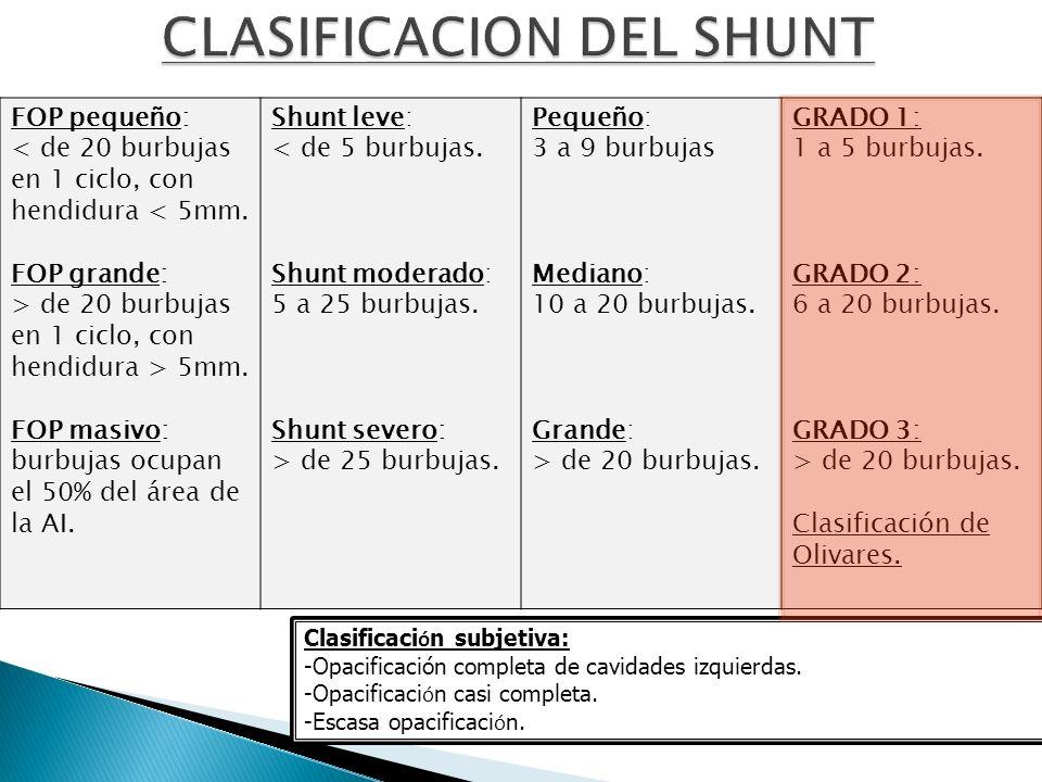 CLASIFICACION DEL SHUNT
