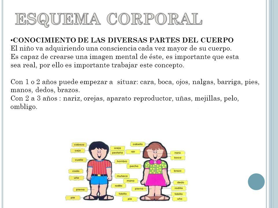 ESQUEMA CORPORAL CONOCIMIENTO DE LAS DIVERSAS PARTES DEL CUERPO