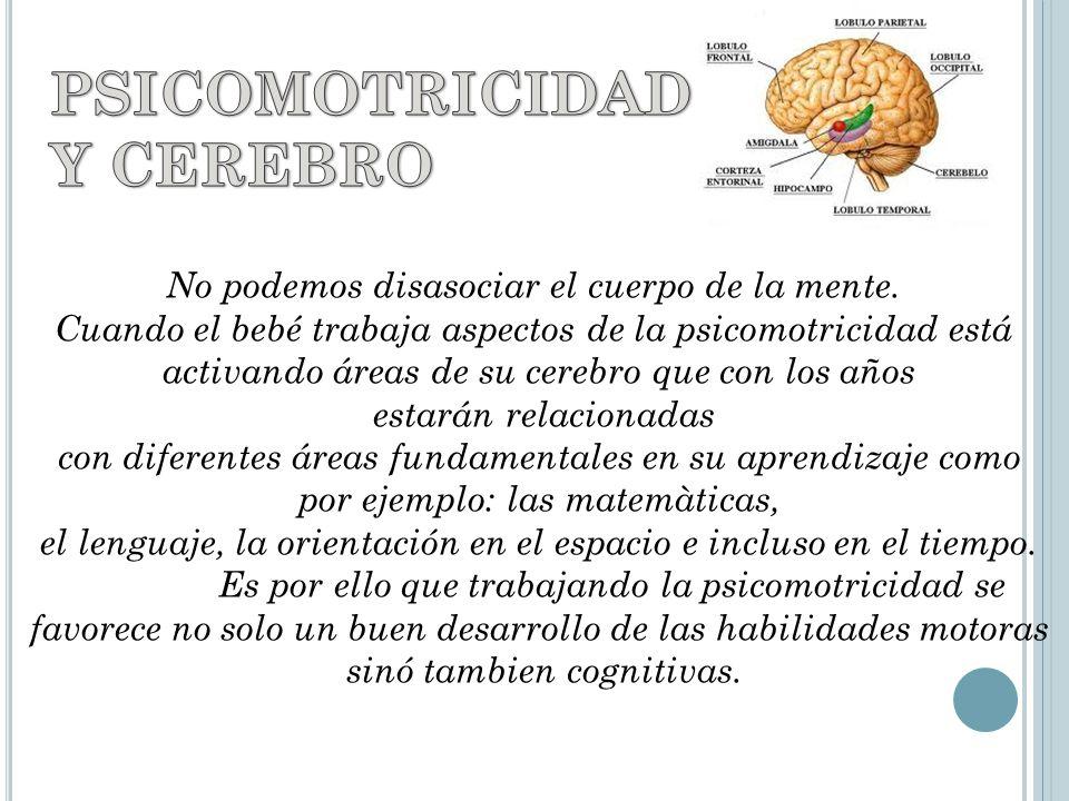 PSICOMOTRICIDAD Y CEREBRO No podemos disasociar el cuerpo de la mente.
